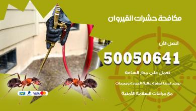 مكافحة حشرات القيروان