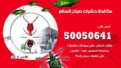 مكافحة حشرات صباح السالم