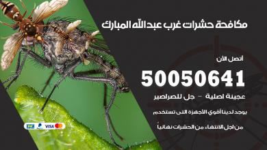 مكافحة حشرات غرب عبدالله المبارك